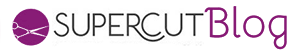 logoblognew